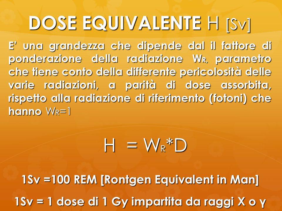 DOSE EQUIVALENTE H [Sv]
